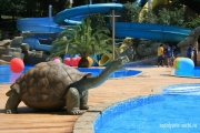 pool-outdoor-gorki_04